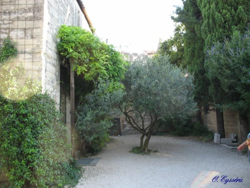 Villeneuve lez avignon 1999 for Entretien jardin villeneuve les avignon