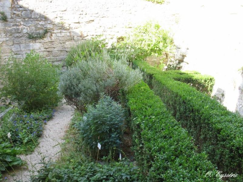 Villeneuve Lez Avignon 1963: entretien jardin villeneuve les avignon